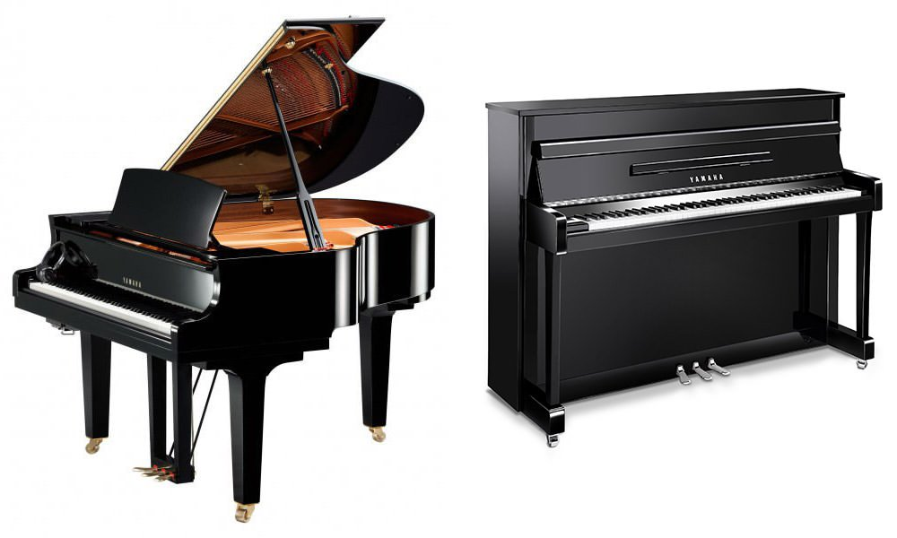 desevedavy pianos sp cialiste pianos claviers et orgues nantes. Black Bedroom Furniture Sets. Home Design Ideas